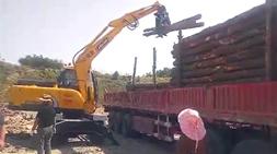 轮式挖掘机式抓木机使用优势介绍,南方地区使用范围更加有优势