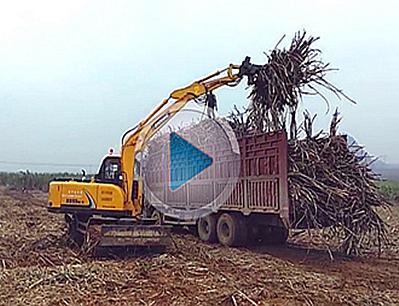 17款宝鼎95轮式抓甘蔗机抓木机广西实地视频工况介绍展示