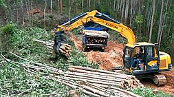 宝鼎小型挖掘机厂家一机多用履带挖掘机车型打造核心竞争力  国内挖掘机械市场不乏竞争力