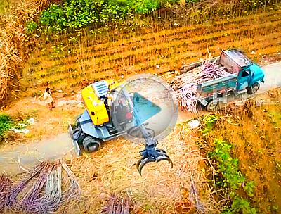 广西地区2018甘蔗收获季宝鼎95新款抓木机工作视频