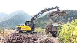 轮式抓木机木材装卸车操作技巧