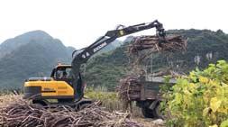 国内抓木机市场受欢迎抓木机车型分析