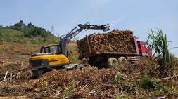 抓木头抓废铁抓物料宝鼎多功能轮式抓木机