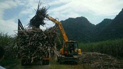 厂家直销的抓木机售后服务不容忽视