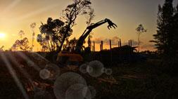 轮式抓木机利益驱使下的国内抓木机市场