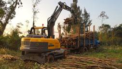 宝鼎多功能轮式挖掘机抓木机价值体现