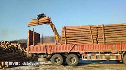 想买抓木机?宝鼎抓木机厂家教你如何选择