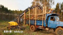 国内轮式抓木机市场的时光变迁