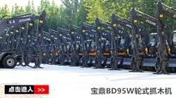 宝鼎抓木机厂家销售持续发力BD95W-9A型号抓木机2019表现抢眼