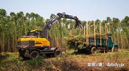 抓木机市场如何甄别优质轮式抓木机车型?
