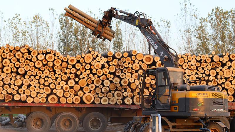2021多用途轮式挖掘机抓木机为何成为你的致富手段?
